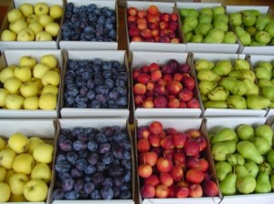 fruit-stand-free